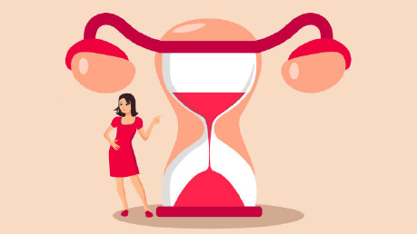 Illustration of the menopause